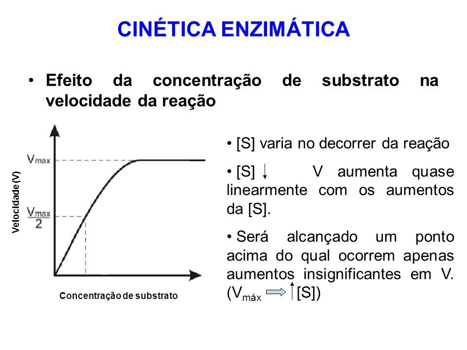 CINÉTICA ENZIMÁTICA Efeito da concentração de substrato na velocidade da reação. [S] varia no decorrer da reação.